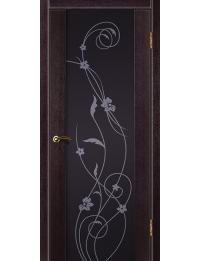 Доступные двери модель Cтиль1 ПВХ (венге) черный триплекс рис Орхидея
